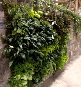 Living wall attached to brick-like fence.