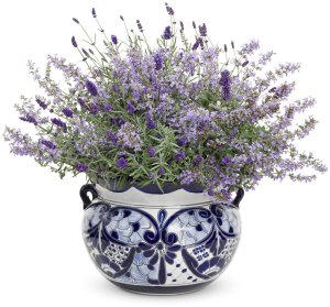 Catmint and lavender