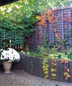 Trellis from another angle