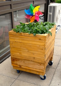 On a roof of a co-op, a garden flourishes with built-in beds and several rolling containers for individual veggie harvests.