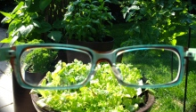 Glasses and vegetables