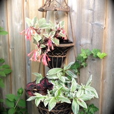 Landscape fabric in plant container