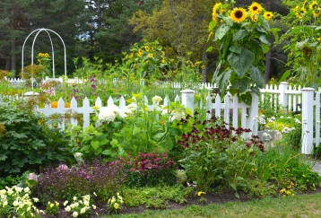 Potager at Reford Gardens