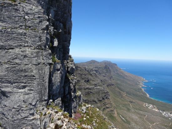 On the slopes of Table Mountain