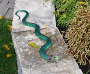 Fake cobra snake