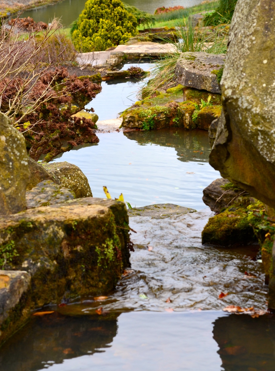 Water feature with shallow water