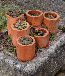 Pipes as pots