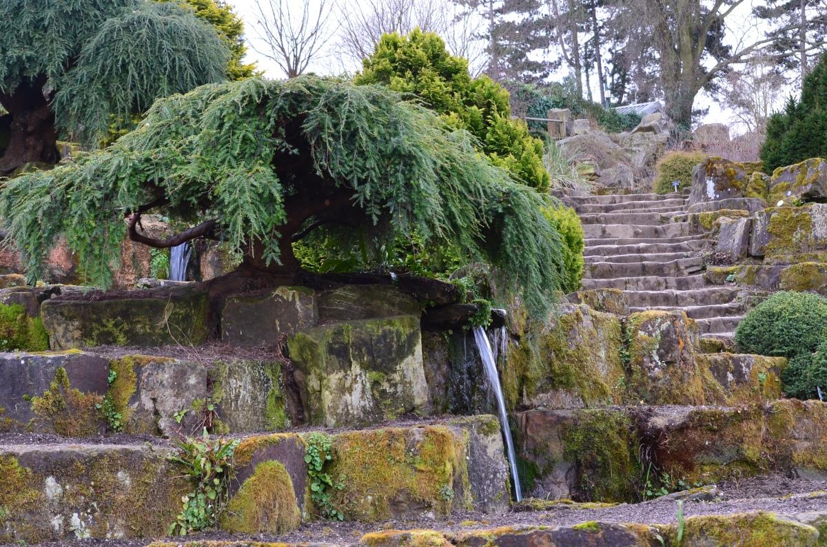 Water feature in rockery