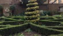 Interior, Knot Garden