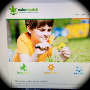 Home page NatureWatch