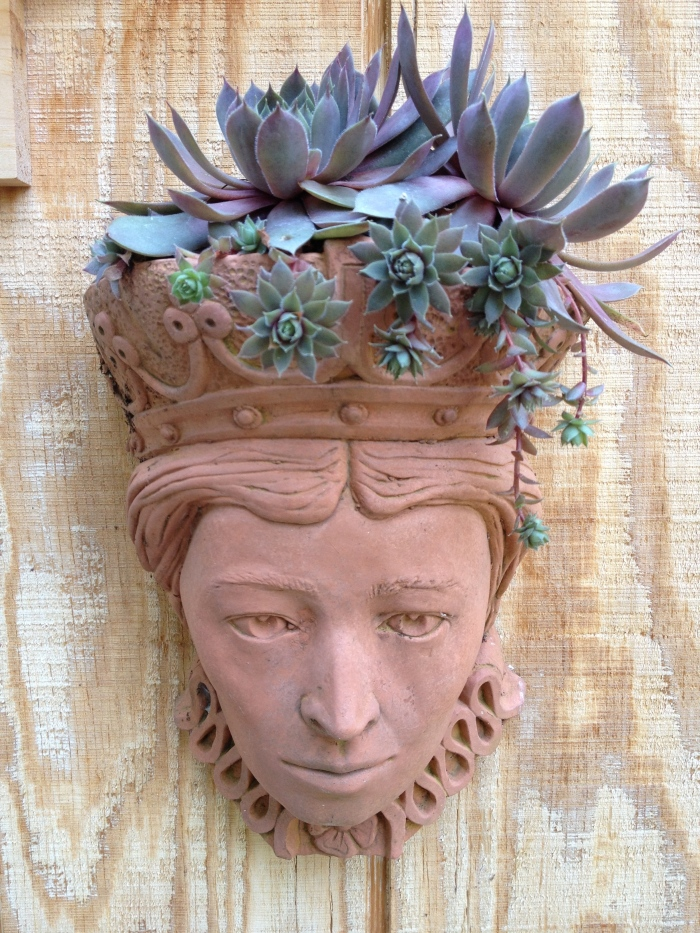 Every summer, I create a new 'hairdo' for this container–one of my favourites. Succulents always seem work best, whether I'm aiming for an elegant updo or funky dreds or both.