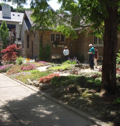 Front garden with paths