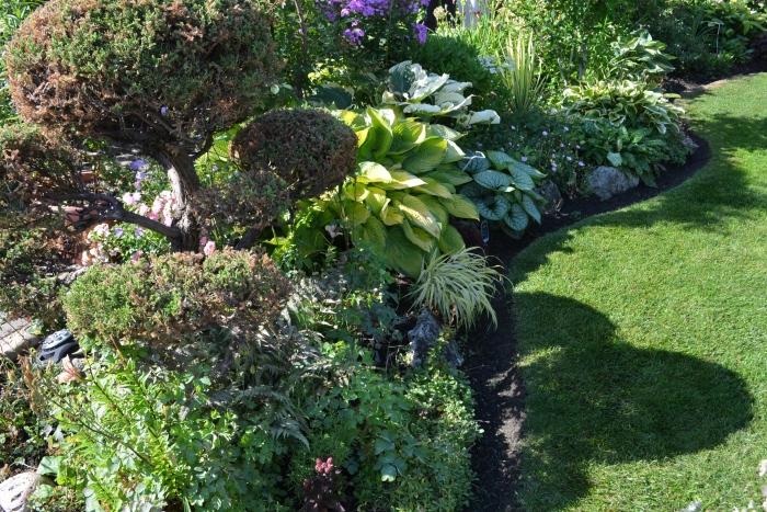 Curvy flower beds