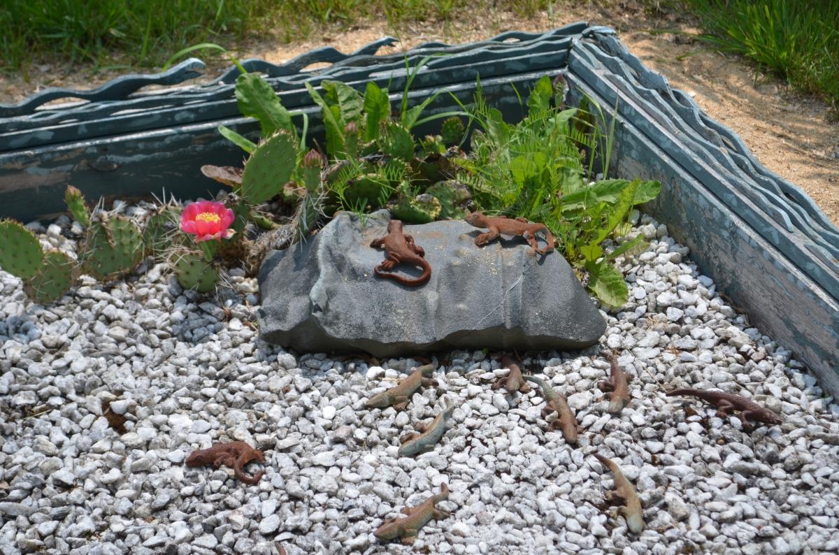 Lizard art installation