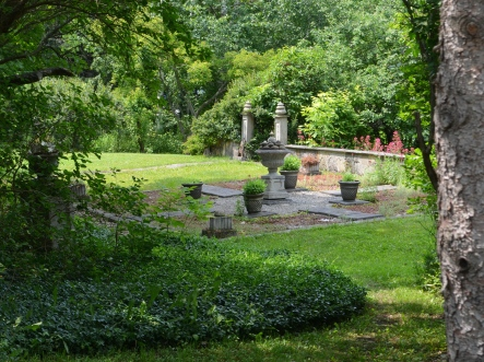 Shady garden 2