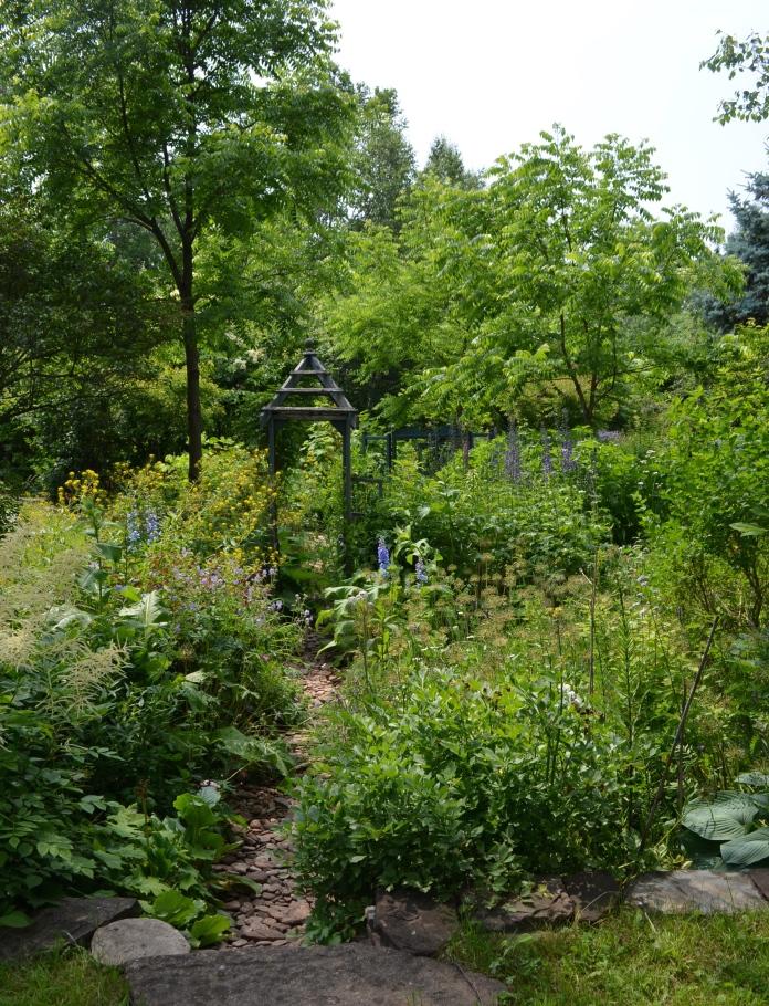 Shady garden 3