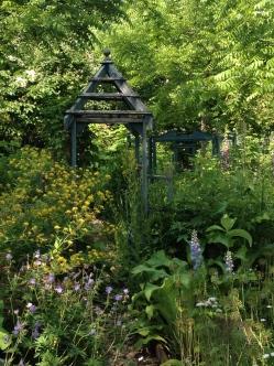 Shady garden 1