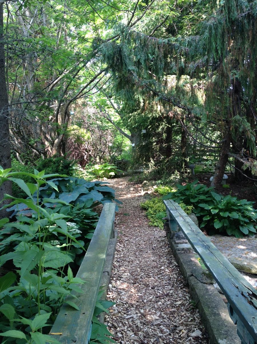 Path over pond