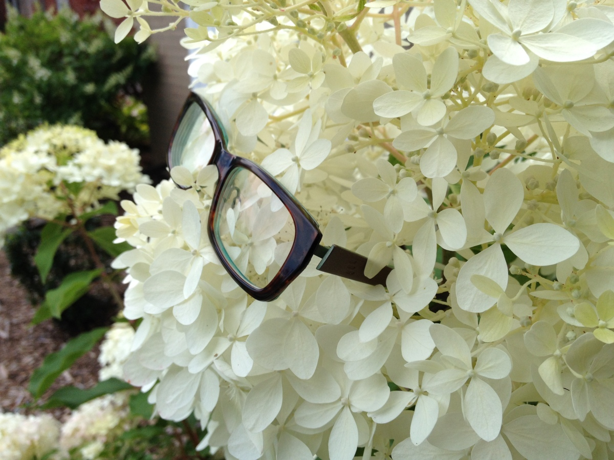 Flower and glasses