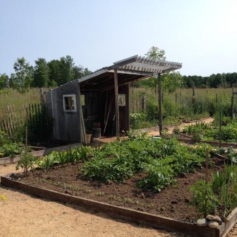 Veggie garden shed