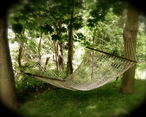 A rope hammock in the shade of trees.