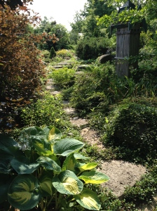 A stepping stone path leads through a lush garden.