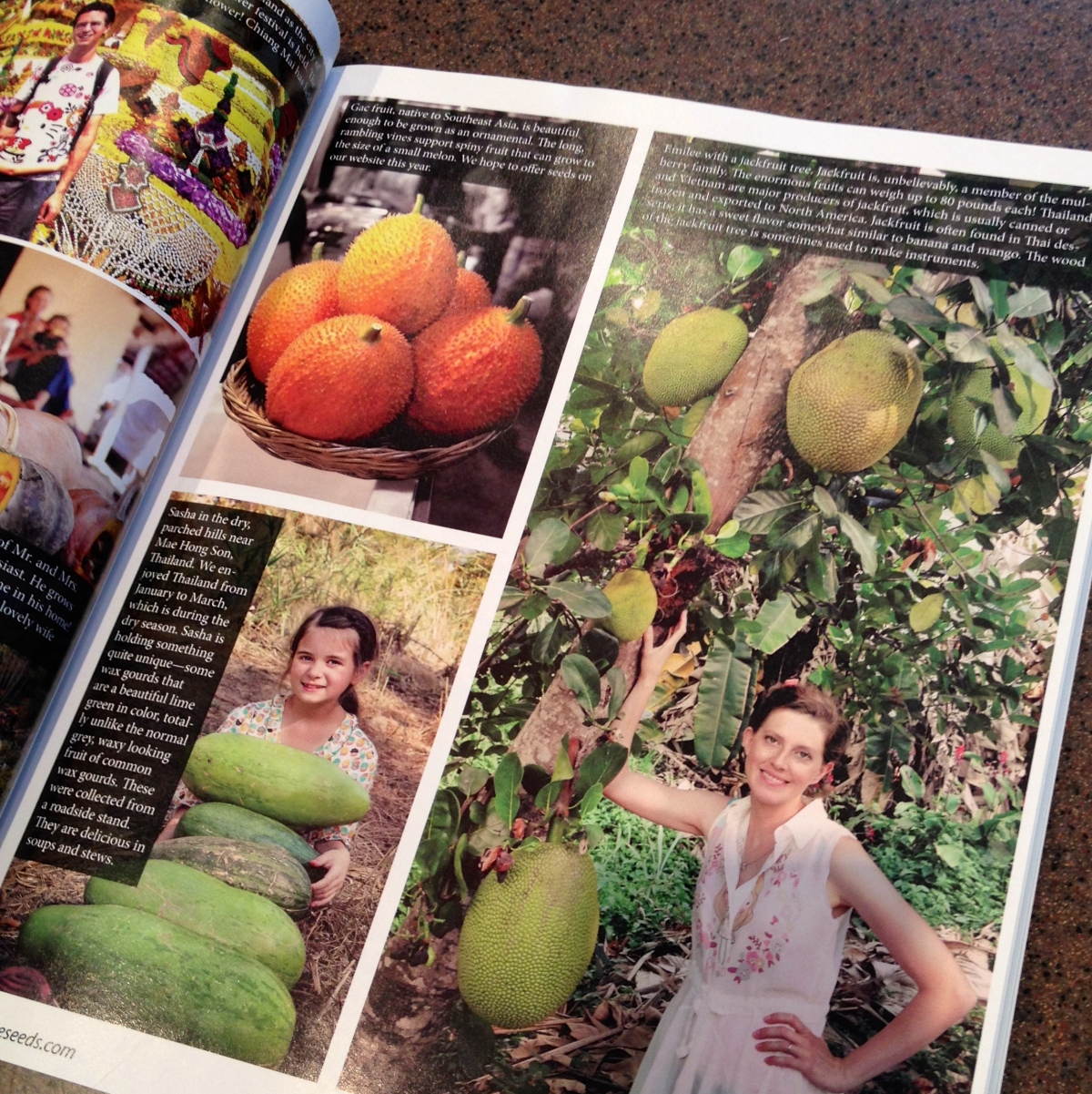 Page from Whole Seed Catalog showing gourds.