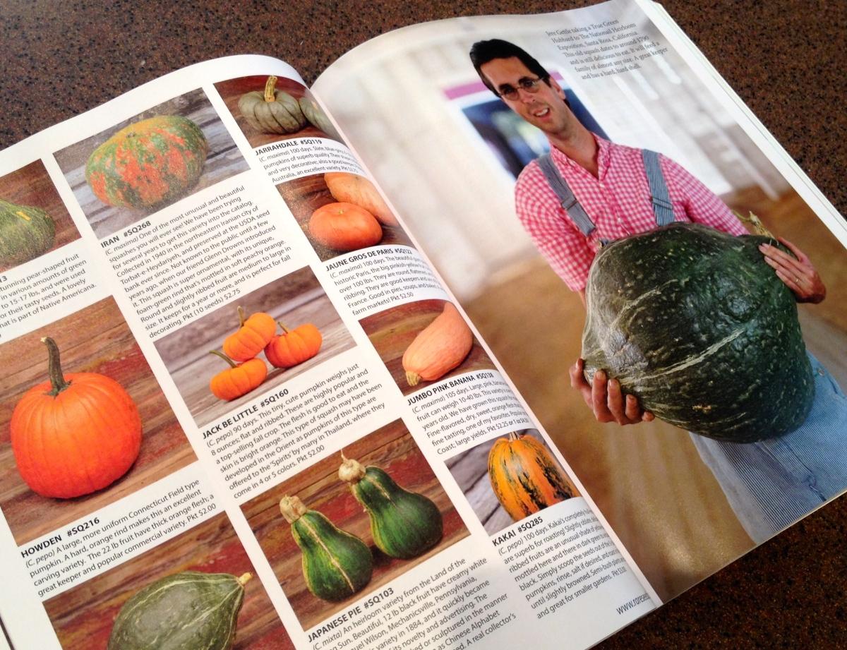 Pages showing pumpkins