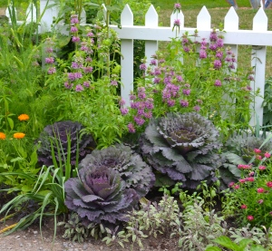 Edible plants are used instead of ornamentals in a flower bed.