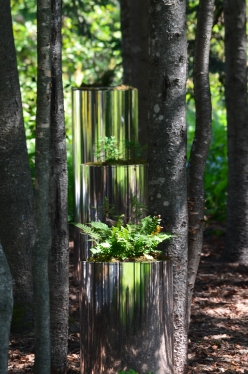 Cylindrical reflective containers filled with forest plants in a grove.