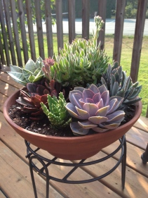 A conical container is filled with succulents of varying textures.