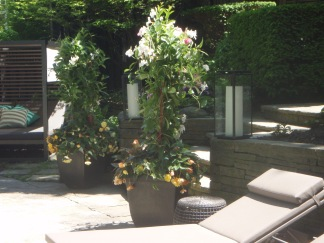 Two very tall patio container plantings