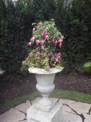 A classic urn container holds a fuchsia standard.