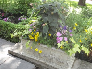 A classic rectangular container filled with plants.