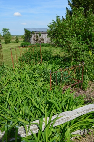 A metal bed frame adds interest to a flower bed in a garden in farm country.