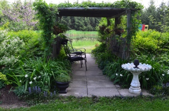 An outdoor seating area within a pergola.