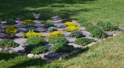 A checkerboard effect is made from stepping stones and succulents.