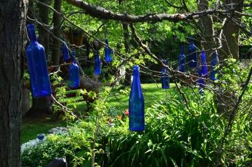 Blue glass bottles hang from branches in a garden glen.