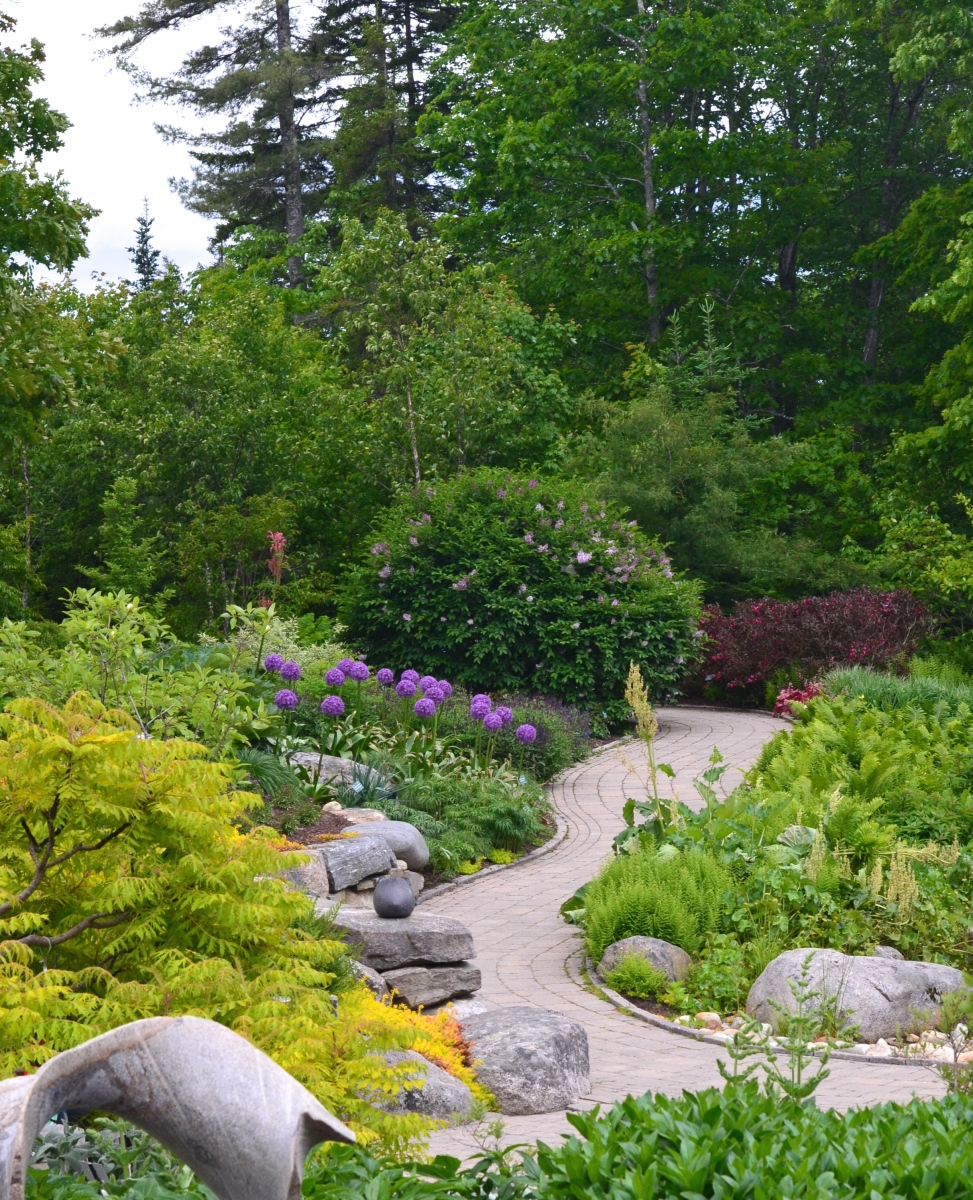A woodland garden setting with rocks and a pathway
