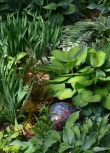 A close up of a bed of hostas with a garden ornament.