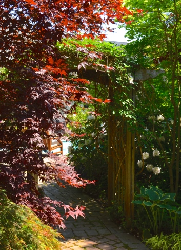 An archway is framed by a Japanese maple on its shady side