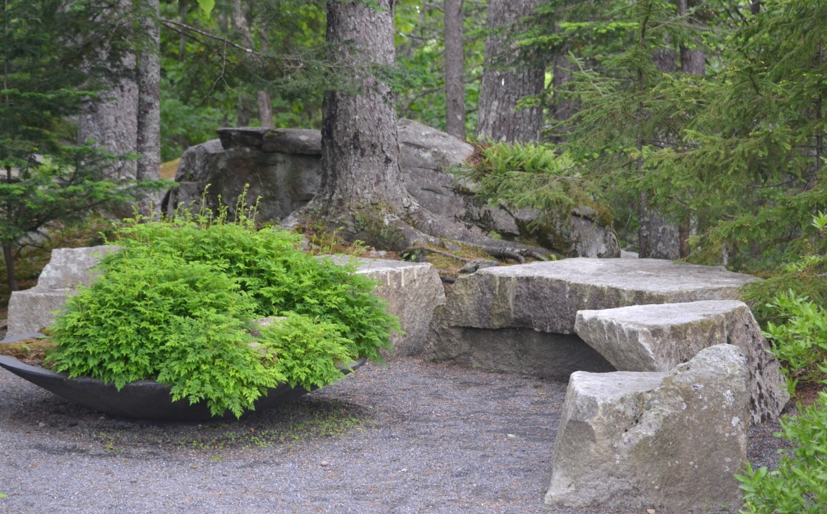 Stone benches in a woodland garden setting