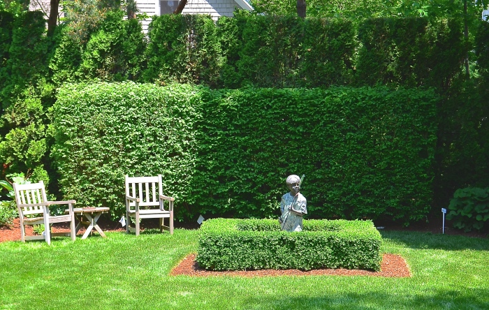Two layered hedges add dimension to a small garden