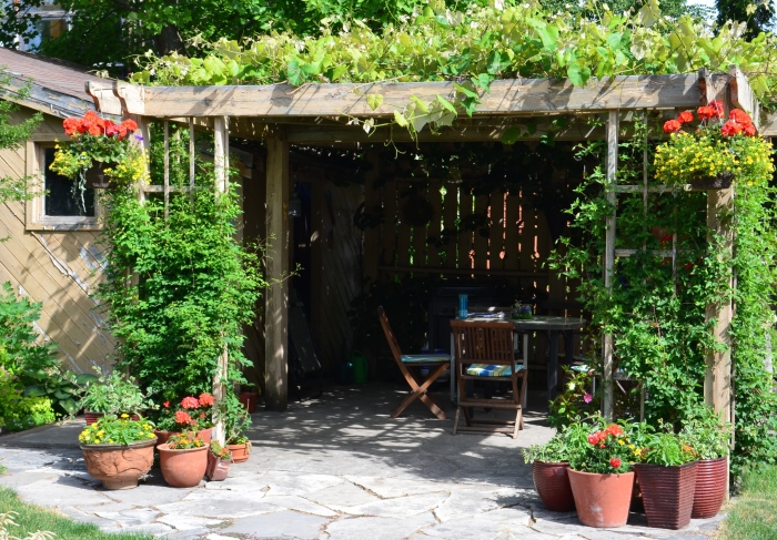 A vine covered pergola with stone patio.