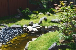 A zen garden with Irish moss and rocks