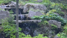 Slabs of natural rock feature in a woodland garden setting.
