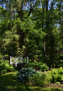 A white bridge spans a small creek in a garden with a woodland theme