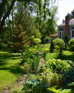 A small creek runs through a common area surrounded by homes with small gardens.