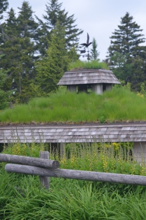 A public building has a living roof covered in grass.
