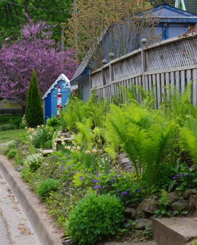 A strip garden along a fence features eye-catching perennials.